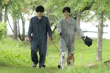 林遣都さん、中川大志さんが実在した動物保護サークルの獣医学生役を熱演!映画『犬部!』オリジナルクリアファイルをプレゼント